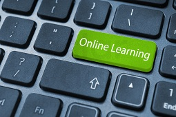 Online Learning Tutors