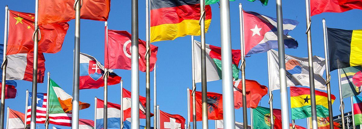 Online Test Series on World Organisation